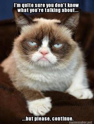Top 40 Funny Grumpy cat Pics