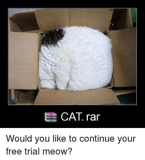 Funny Free and Cat CAT rar