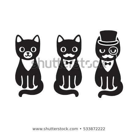 Cute cartoon drawing of black and white tuxedo cat with mustache and hat Funny cat