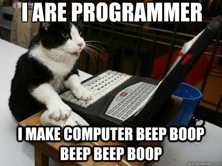 I are programmer I make puter beep boop beep beep boop