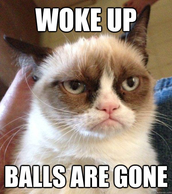 Woke up Balls are gone Woke up Balls are gone Grumpy Cat