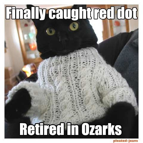 Finally Caught Red Dot Cat Meme