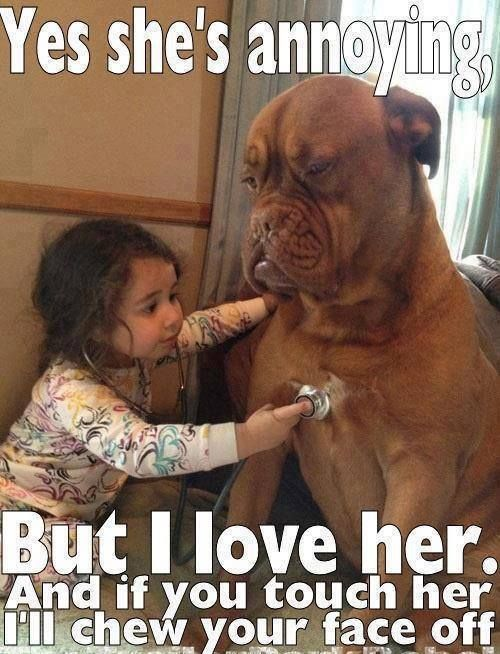one day my child will have this relationship Dog Quotes Funny Cheer Up Quotes Funny