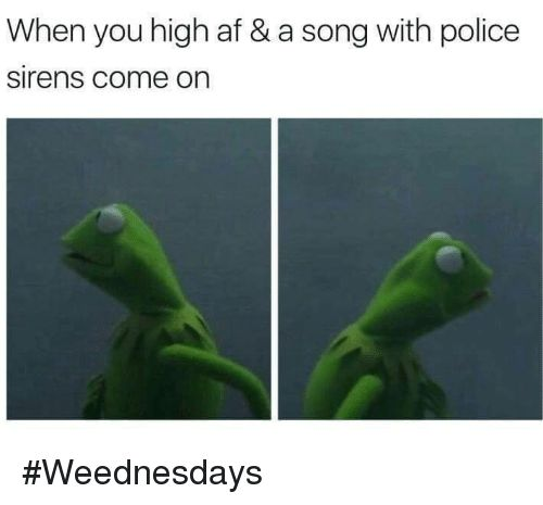 Memes High AF and A Song When you high af & a song