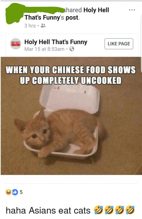 Cats Chinese Food and Food hared Holy Hell That s Funny s post 3