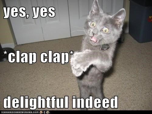 delightful approve captions applause clap Cats