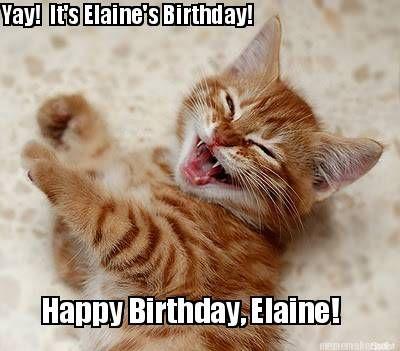 yay its elaines birthday happy birthday elaine