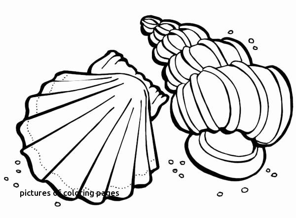 Ninja Turtle Coloring Mask Turtle Coloring Pages Unique Printable Cds 0d – Fun Time