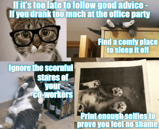 Watch the Marvelous Funny Cat Memes College
