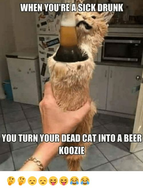 Beer Drunk and Memes WHEN YOURE ASICK DRUNK YOU TURN YOUR DEAD CAT