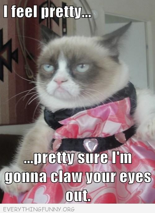 grumpy cat meme picture i feel pretty pretty sure i m going to claw your