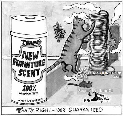 Naughty Cats cartoon 2 of 5