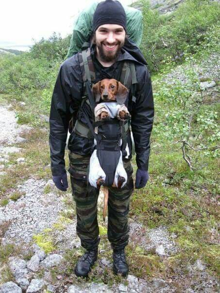 A hot guy carrying a dachshund in a baby carrier What more do you need for the ideal hiking trip