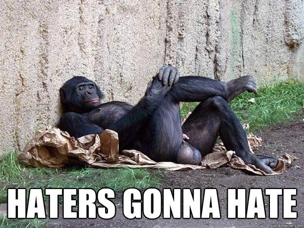 HATERS GONNA HATE HATERS GONNA HATE Hater Monkey
