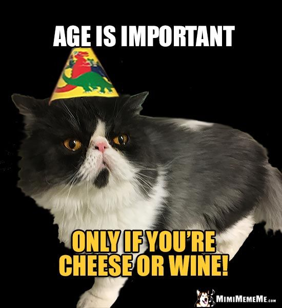 Reluctant Party Cat Says Age is important only if you re cheese or wine