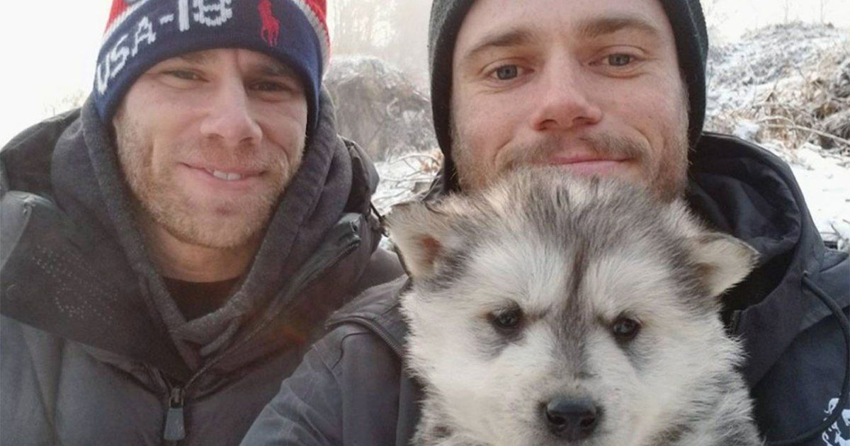 Winter Olympics 2018 Skier Gus Kenworthy Adopts Dog Meat Farm Puppy