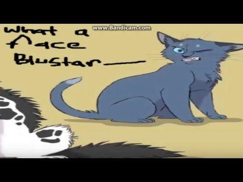 Funny Bits Warrior Cats Videos