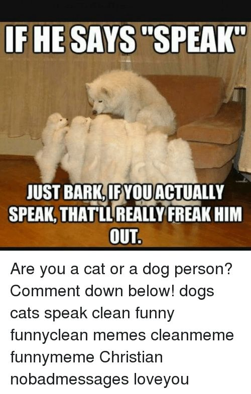 """Memes 🤖 and Freaks IF HE SAYS SPEAK"""" JUST BARK YOUACTUALLY"""