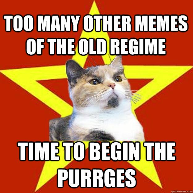 Watch the Suprising Funny Cat Pictures Of Begin