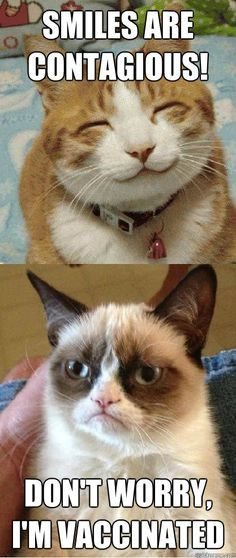 Smiles are contagious Grumpy Cat Funny Caption Funny With Quotes