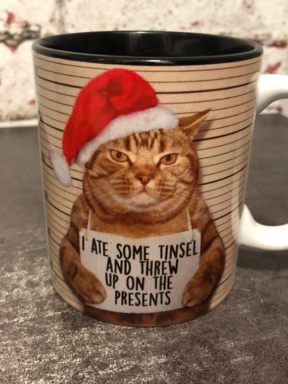 Watch the Unique Christmas Cat Funny Pictures