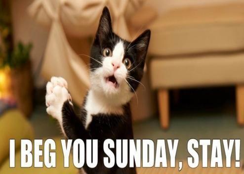 I BEG YOU SUNDAY STAY