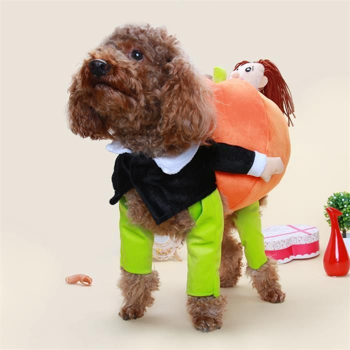2019 Funny Teddy VIP Pet Dog Carrying Pumpkin Transfiguration Loaded Villain With Pumpkin Creative Clothes From Uniquezi $20 45