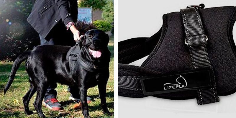 Lifepul Padded No Pull Dog Vest Harness application